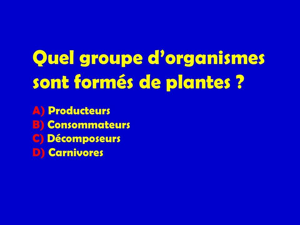 Quel groupe d'organismes sont formés de plantes