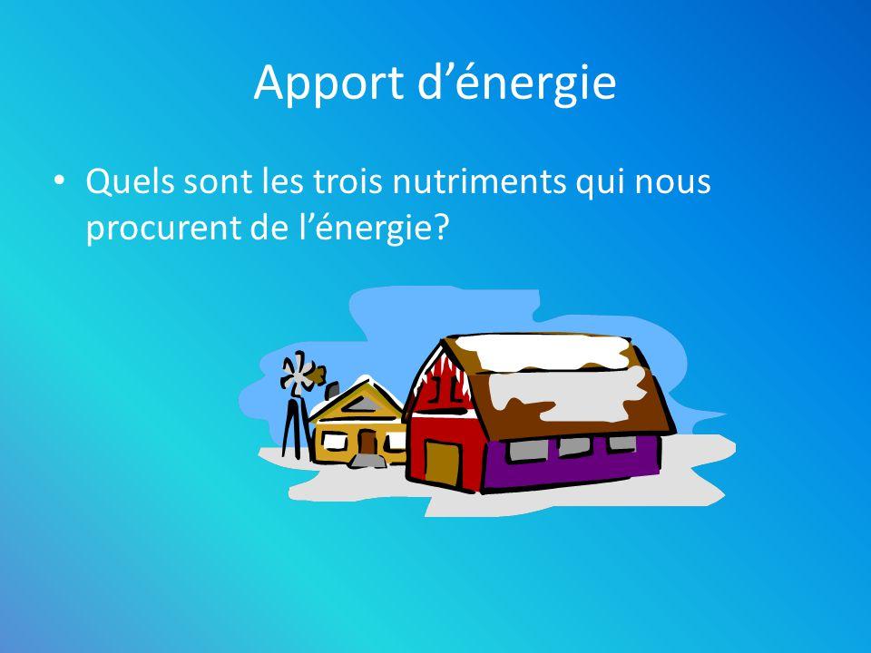 Apport d'énergie Quels sont les trois nutriments qui nous procurent de l'énergie Les glucides. Les protéines.