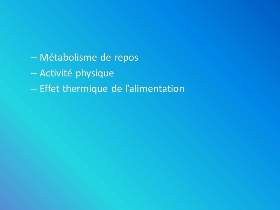 Métabolisme de repos Activité physique Effet thermique de l'alimentation