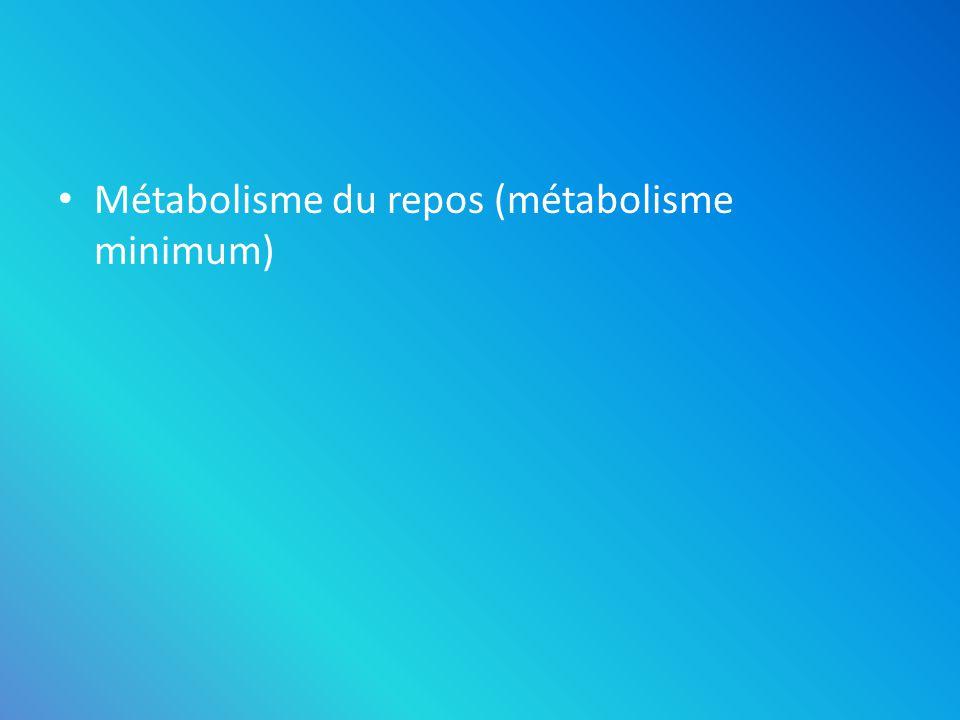 Métabolisme du repos (métabolisme minimum)