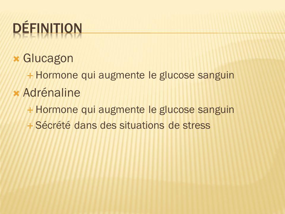 Définition Glucagon Adrénaline Hormone qui augmente le glucose sanguin