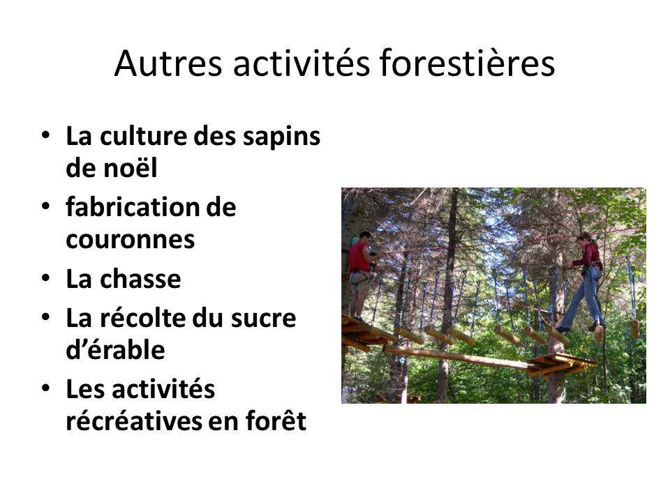 Autres activités forestières