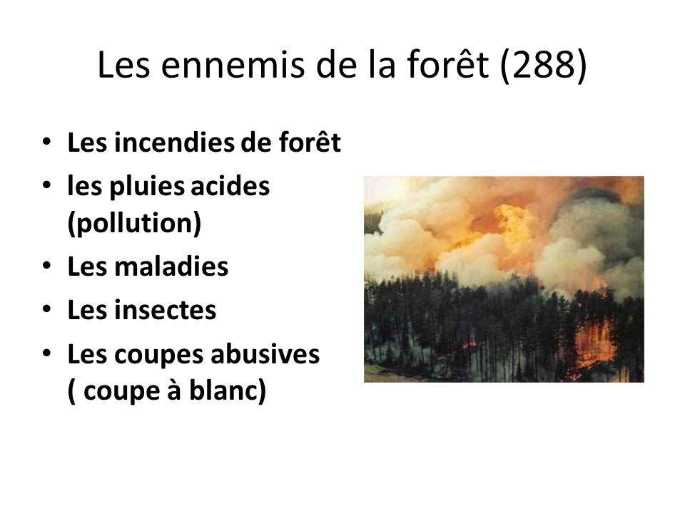 Les ennemis de la forêt (288)