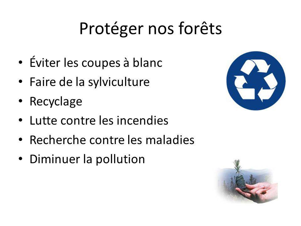Protéger nos forêts Éviter les coupes à blanc Faire de la sylviculture