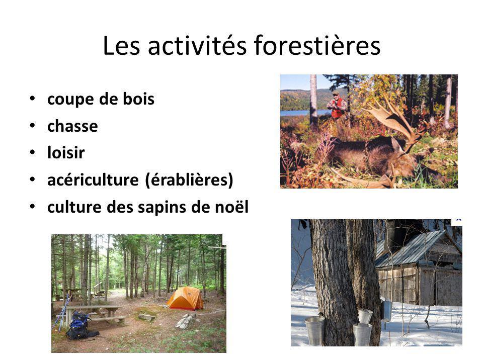 Les activités forestières