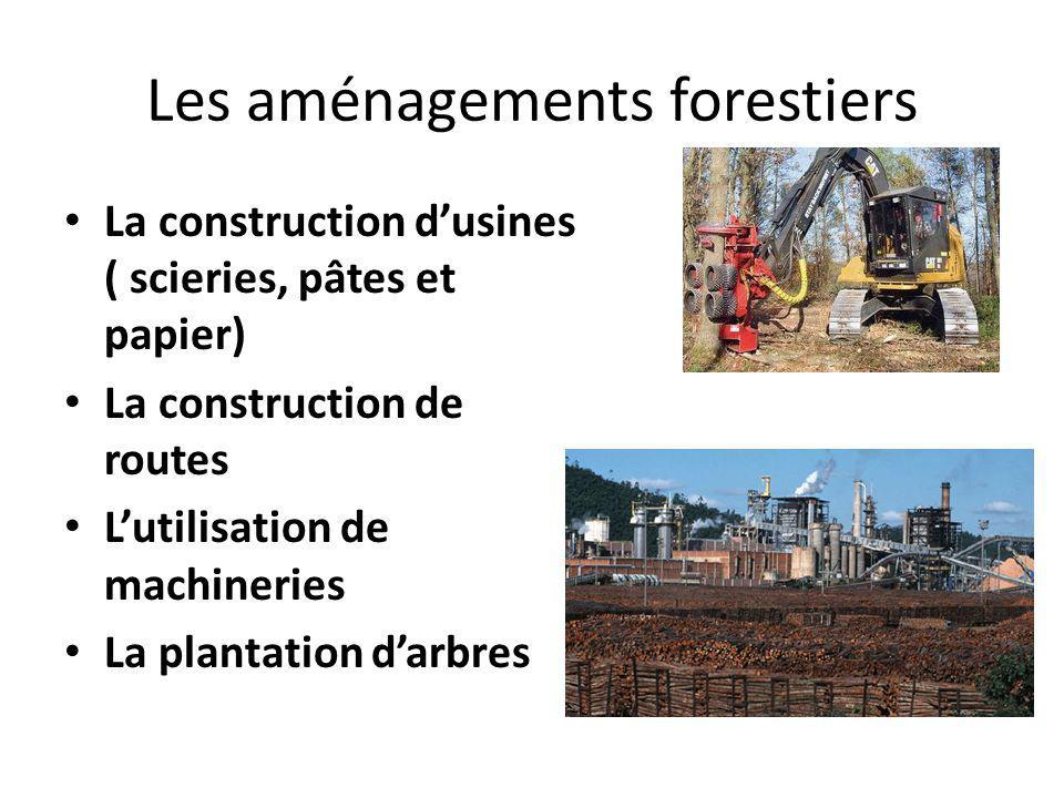 Les aménagements forestiers