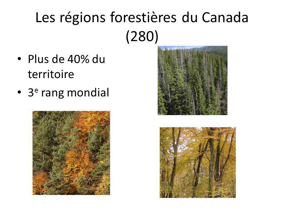 Les régions forestières du Canada (280)