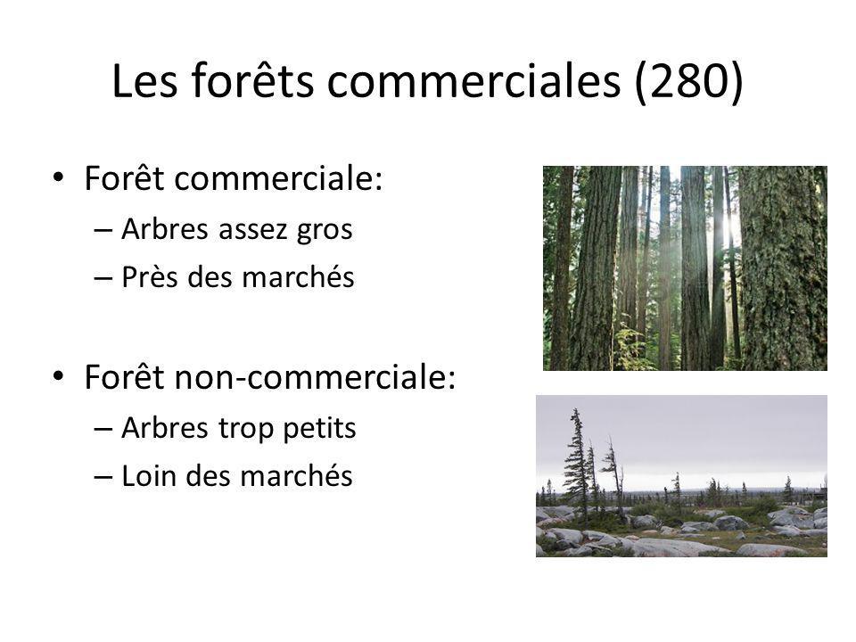 Les forêts commerciales (280)