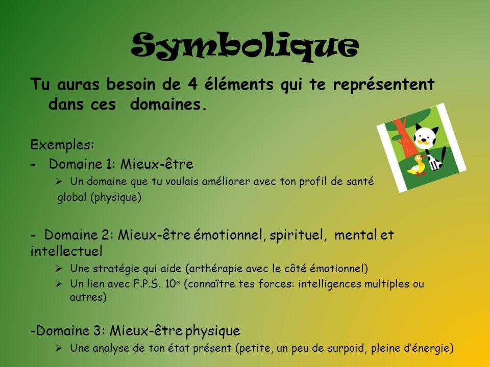 Symbolique Tu auras besoin de 4 éléments qui te représentent dans ces domaines. Exemples: Domaine 1: Mieux-être.