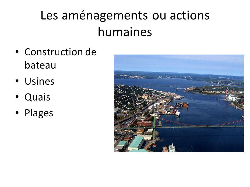 Les aménagements ou actions humaines