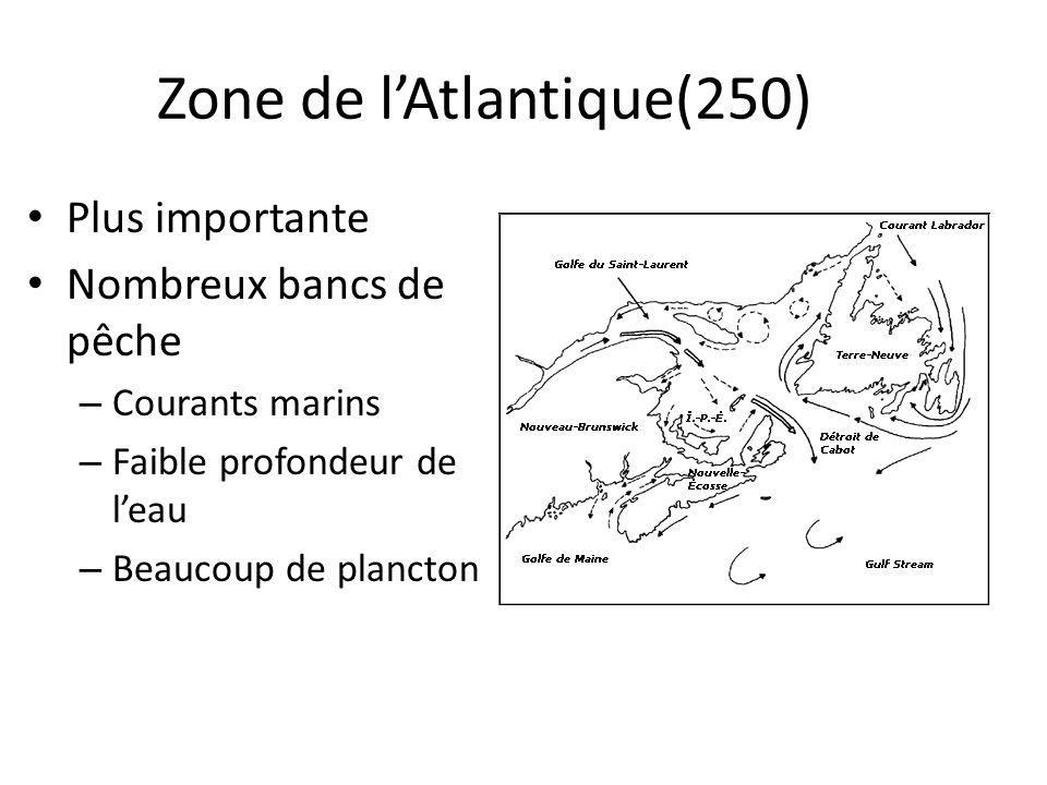 Zone de l'Atlantique(250)