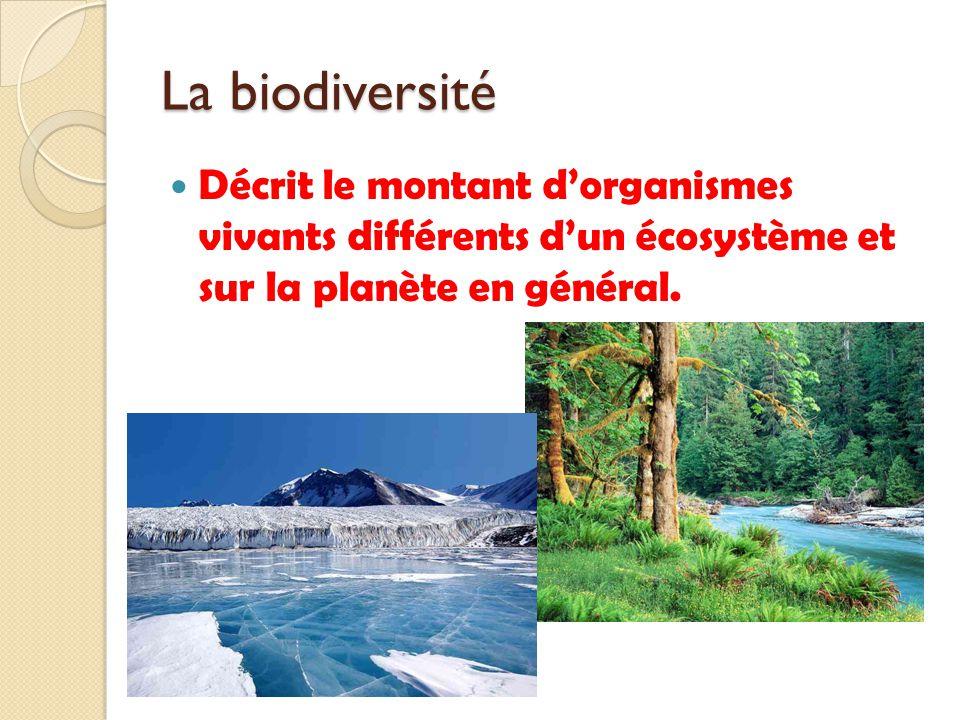 La biodiversité Décrit le montant d'organismes vivants différents d'un écosystème et sur la planète en général.