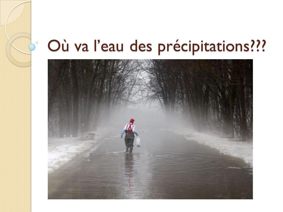 Où va l'eau des précipitations