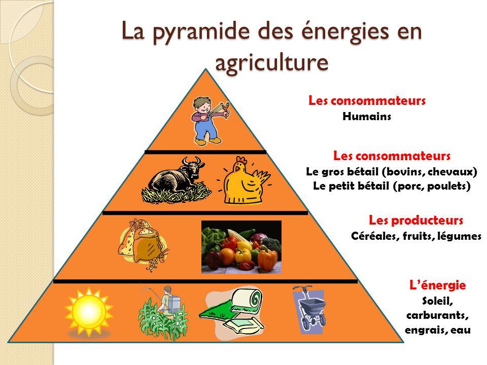 La pyramide des énergies en agriculture