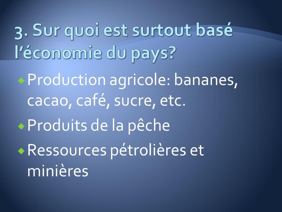 3. Sur quoi est surtout basé l'économie du pays