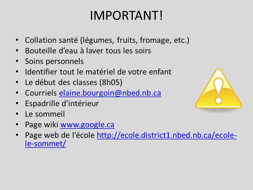 IMPORTANT! Collation santé (légumes, fruits, fromage, etc.)