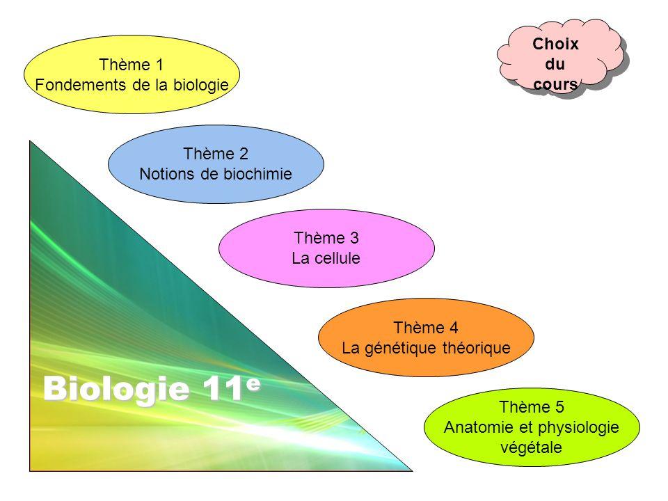 Biologie 11e Choix du cours Thème 1 Fondements de la biologie Thème 2