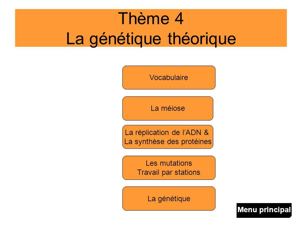 Thème 4 La génétique théorique