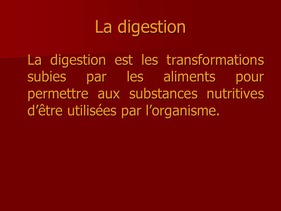 La digestion La digestion est les transformations subies par les aliments pour permettre aux substances nutritives d'être utilisées par l'organisme.