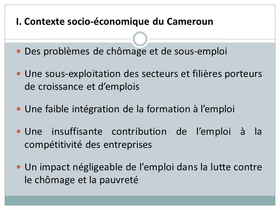 I. Contexte socio-économique du Cameroun