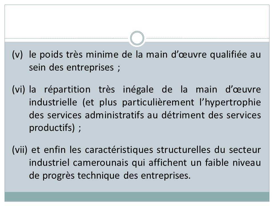 (v) le poids très minime de la main d'œuvre qualifiée au sein des entreprises ;