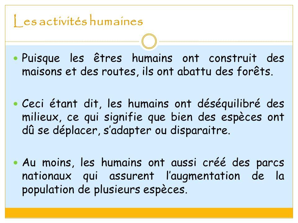 Les activités humaines