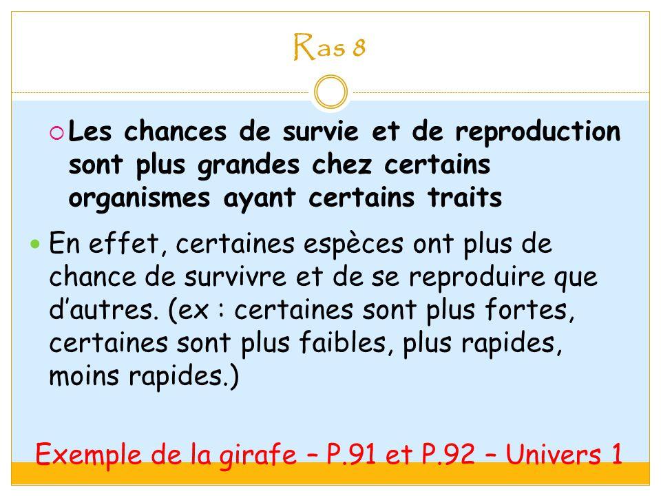 Exemple de la girafe – P.91 et P.92 – Univers 1