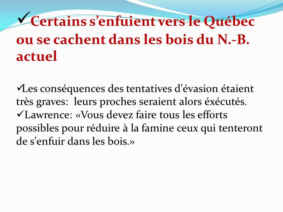 Certains s'enfuient vers le Québec ou se cachent dans les bois du N.-B. actuel
