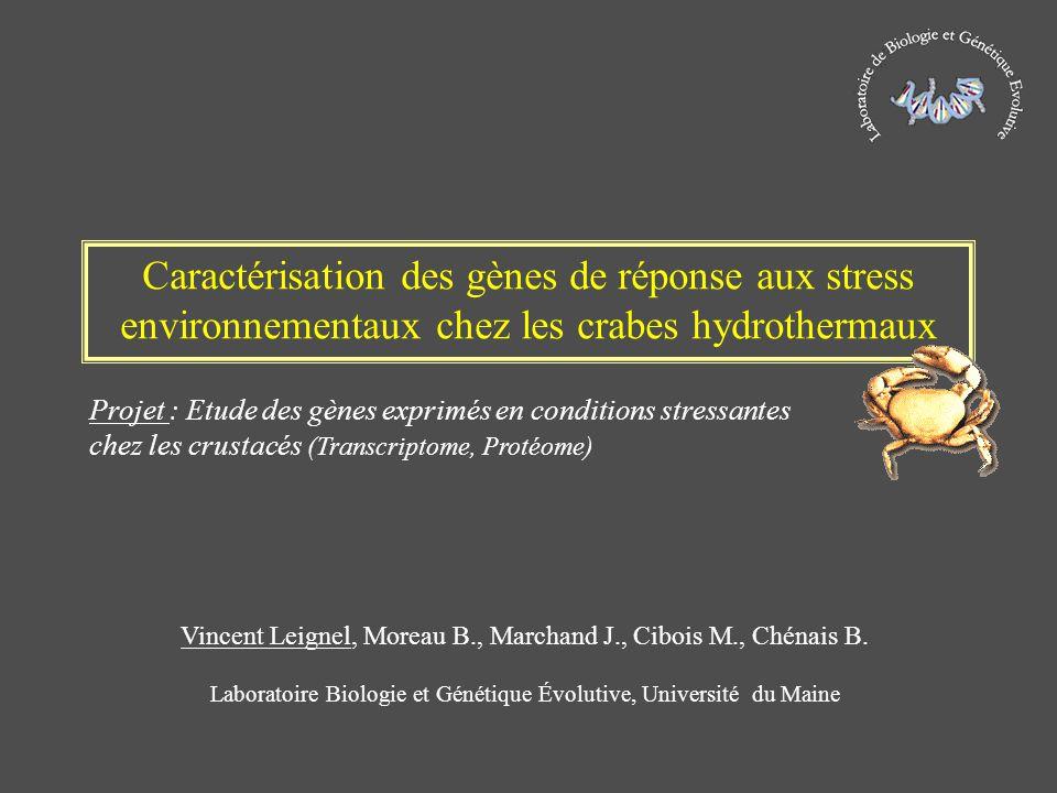 Caractérisation des gènes de réponse aux stress environnementaux chez les crabes hydrothermaux