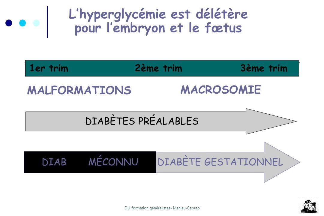 L'hyperglycémie est délétère pour l'embryon et le fœtus