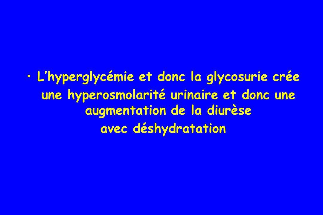 L'hyperglycémie et donc la glycosurie crée