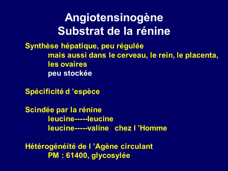 Angiotensinogène Substrat de la rénine