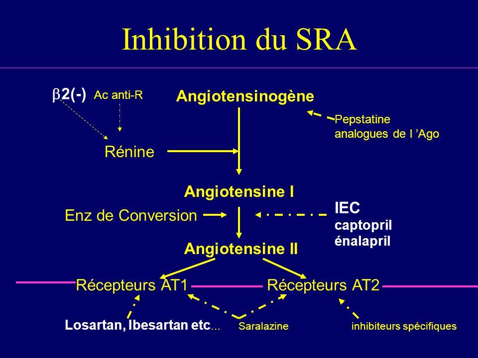 Inhibition du SRA b2(-) Ac anti-R Angiotensinogène Angiotensine I