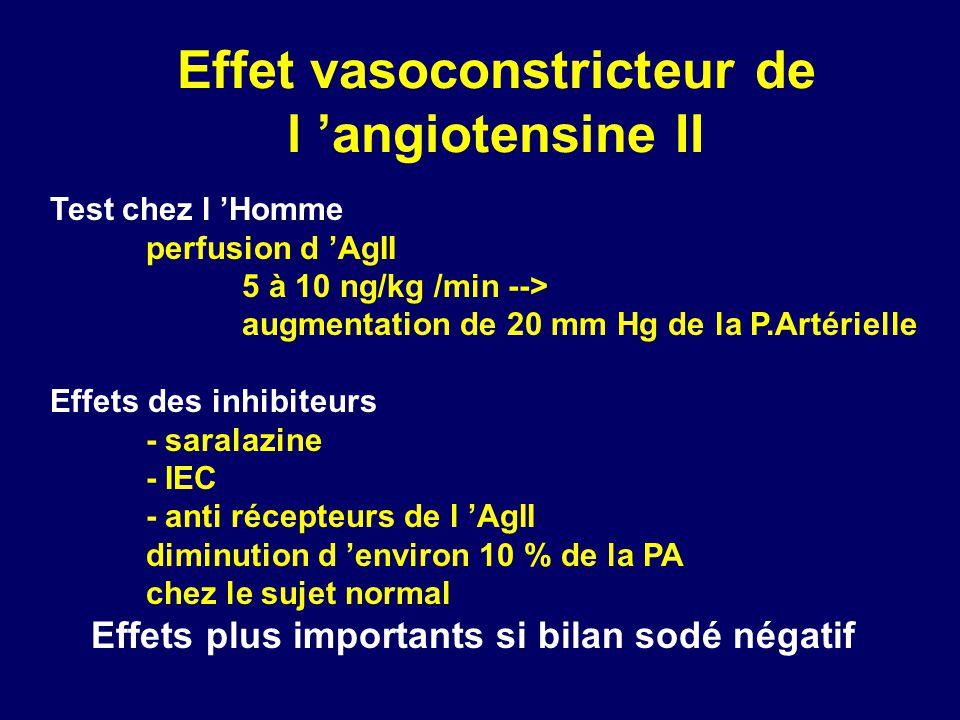 Effet vasoconstricteur de l 'angiotensine II