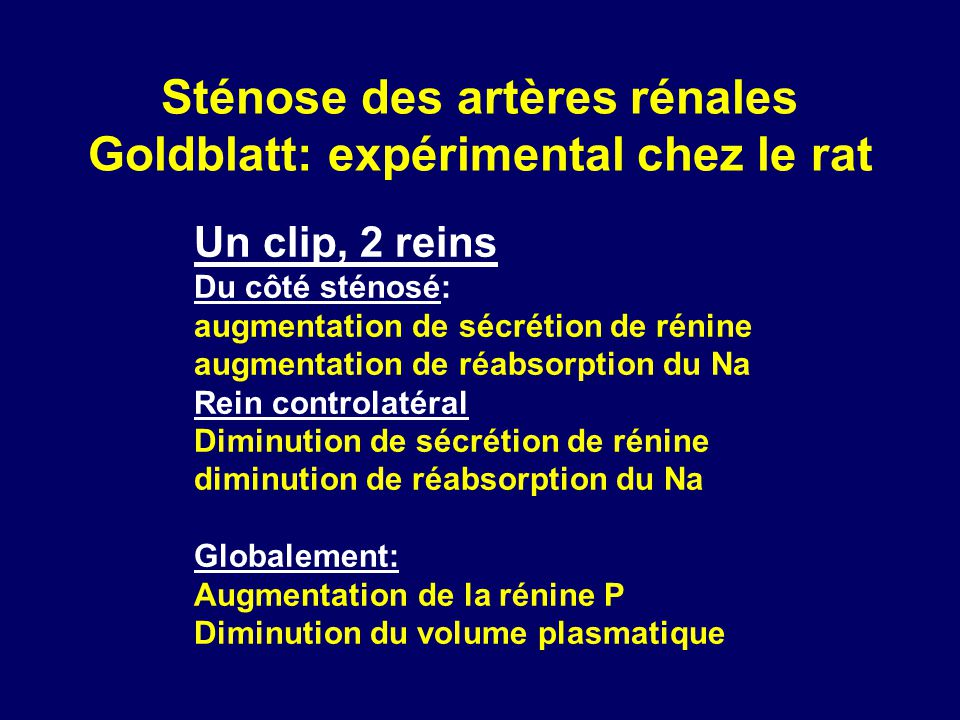 Sténose des artères rénales Goldblatt: expérimental chez le rat