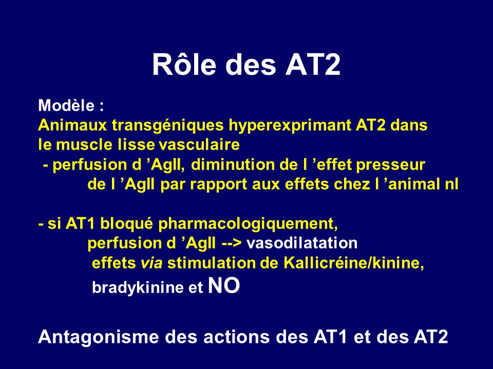 Rôle des AT2 Antagonisme des actions des AT1 et des AT2 Modèle :
