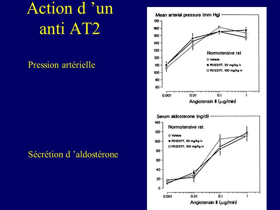 Action d 'un anti AT2 Pression artérielle Sécrétion d 'aldostérone