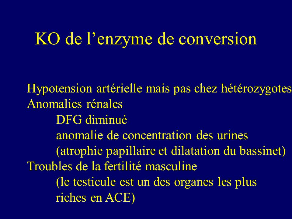 KO de l'enzyme de conversion