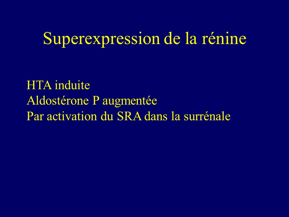 Superexpression de la rénine