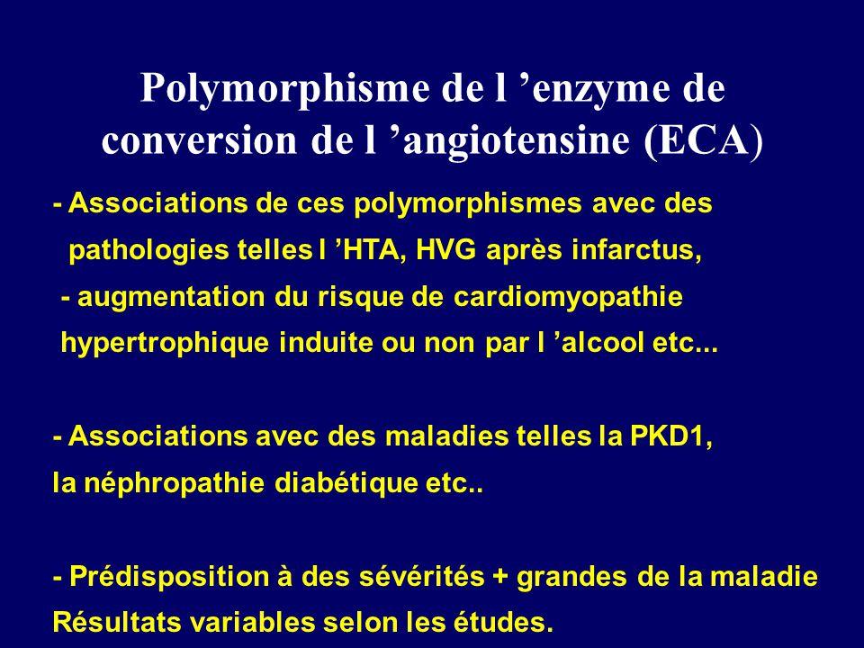 Polymorphisme de l 'enzyme de conversion de l 'angiotensine (ECA)