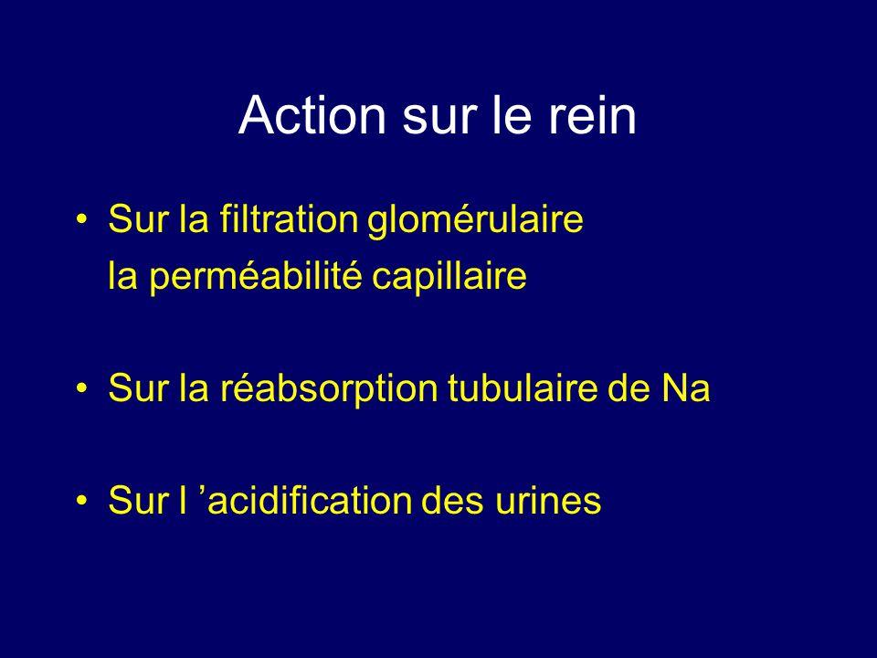 Action sur le rein Sur la filtration glomérulaire