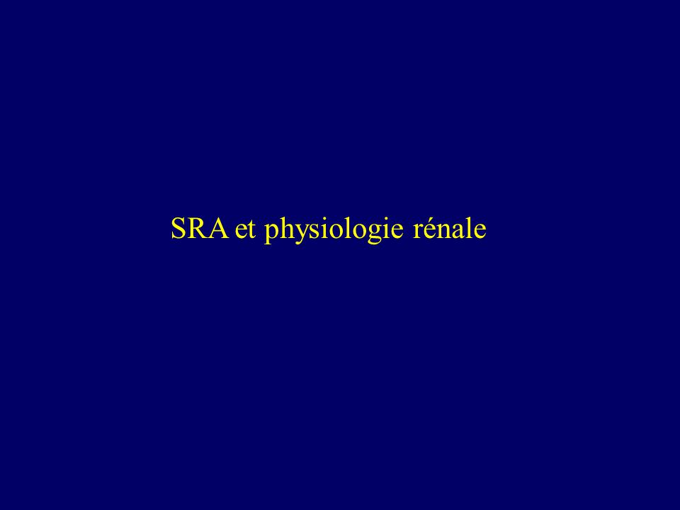 SRA et physiologie rénale