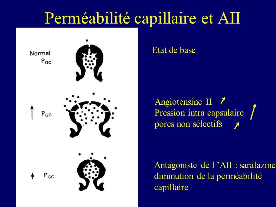 Perméabilité capillaire et AII