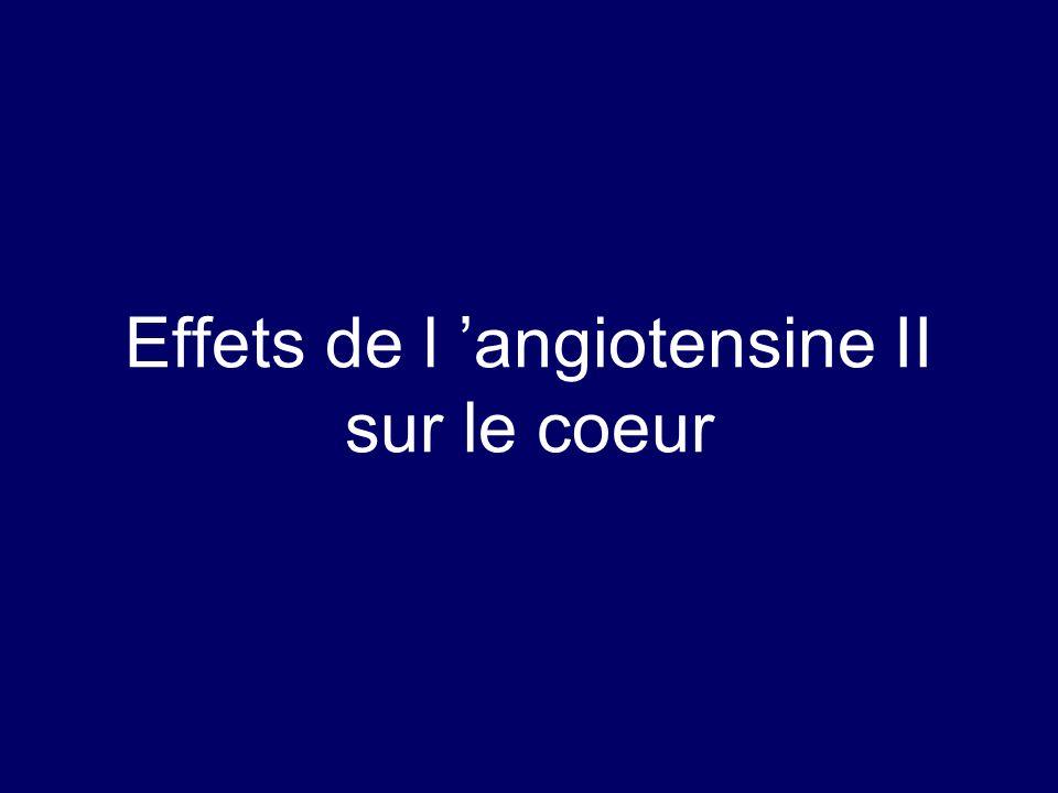 Effets de l 'angiotensine II sur le coeur