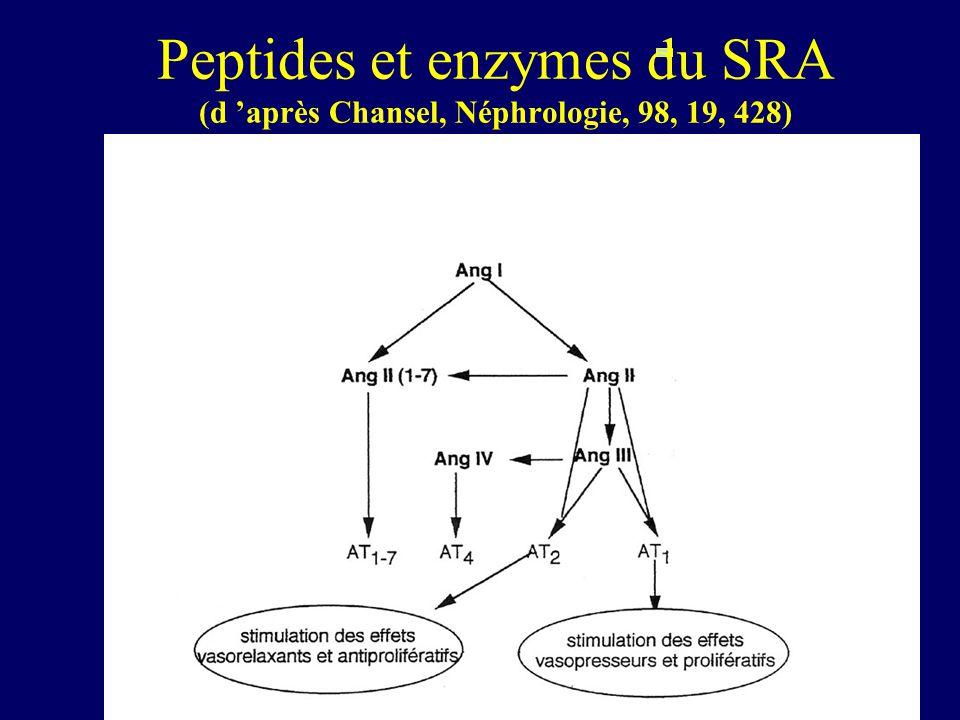 Peptides et enzymes du SRA (d 'après Chansel, Néphrologie, 98, 19, 428)