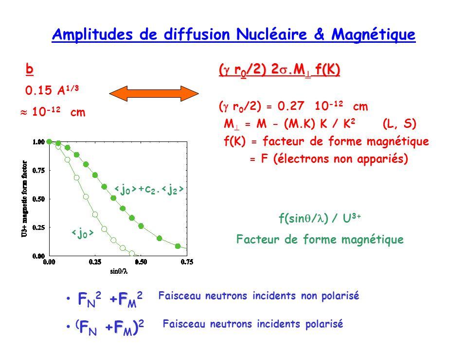 Amplitudes de diffusion Nucléaire & Magnétique
