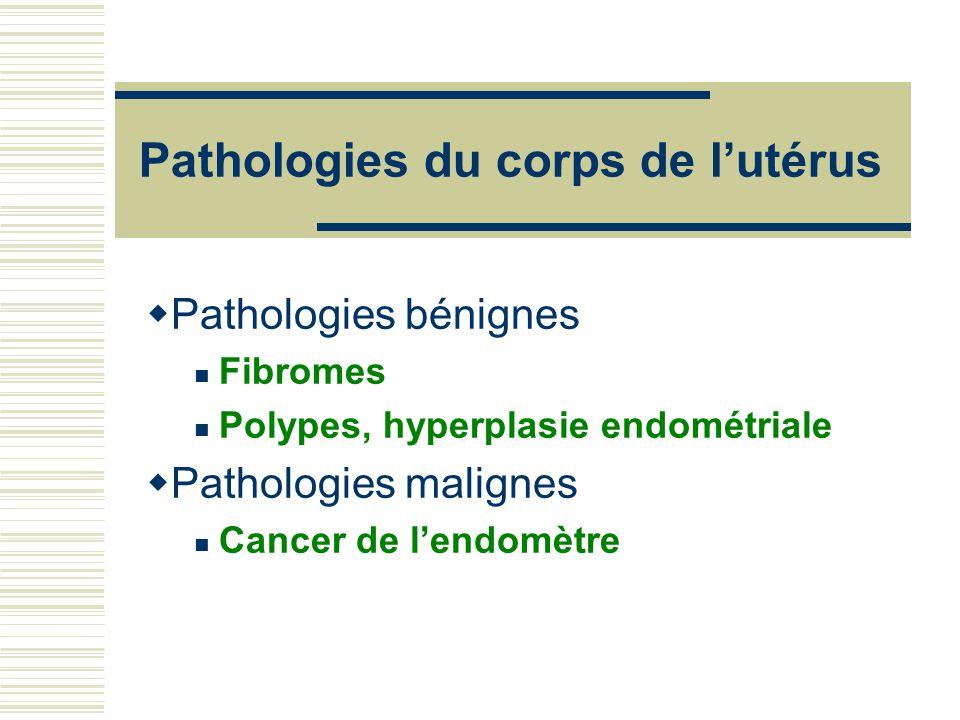 Pathologies du corps de l'utérus