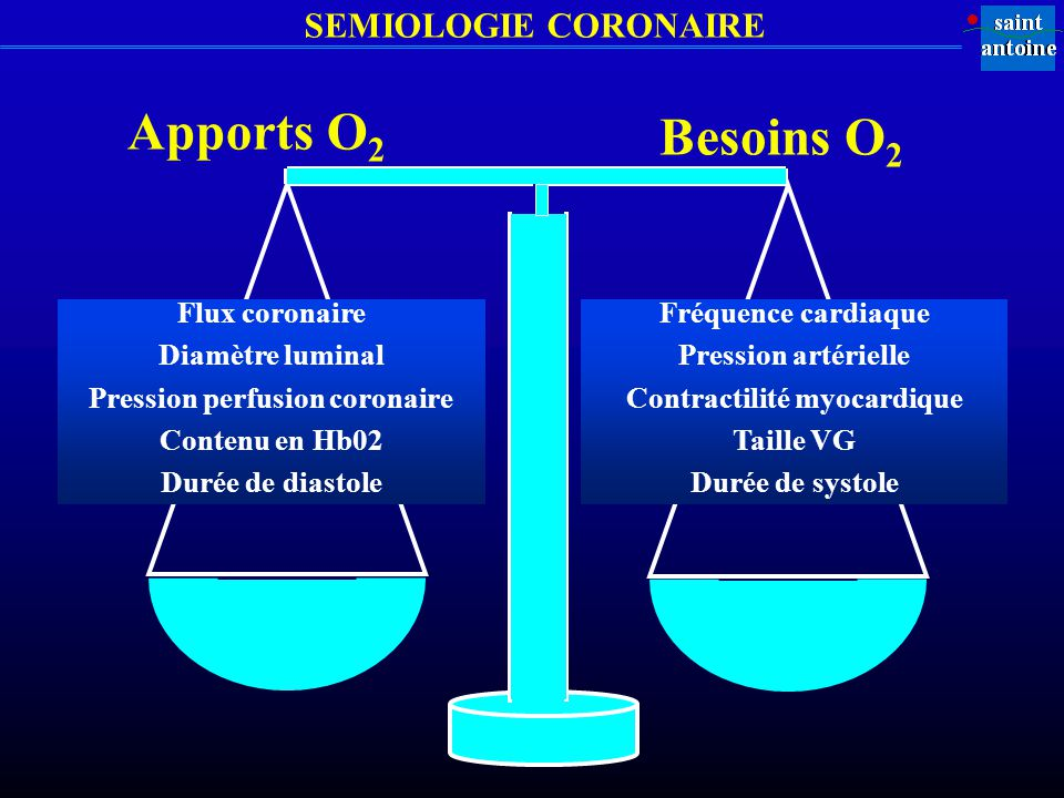 Pression perfusion coronaire Contractilité myocardique