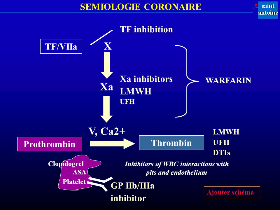 Inhibitors of WBC interactions with plts and endothelium