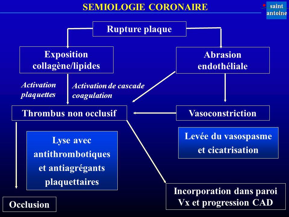 Exposition collagène/lipides Abrasion endothéliale